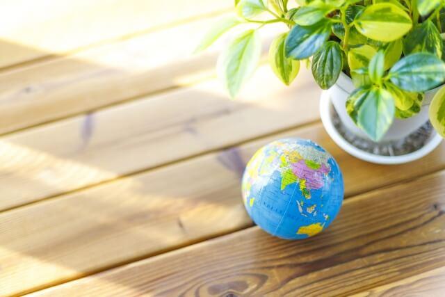 地球儀と観葉植物の写真です