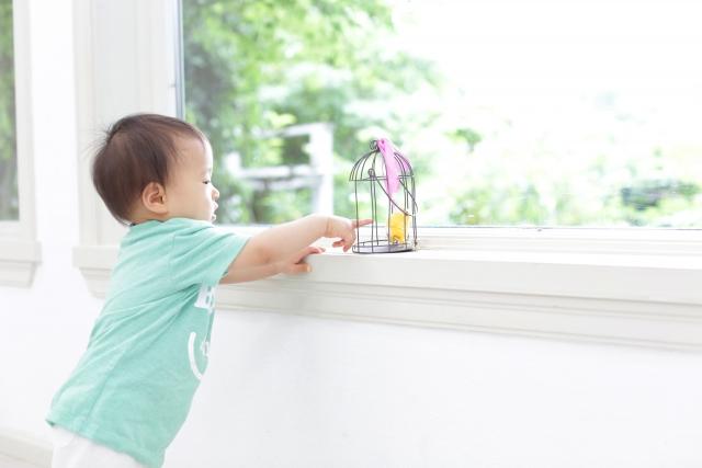 窓辺でつかまり立ちをしている赤ちゃんの写真