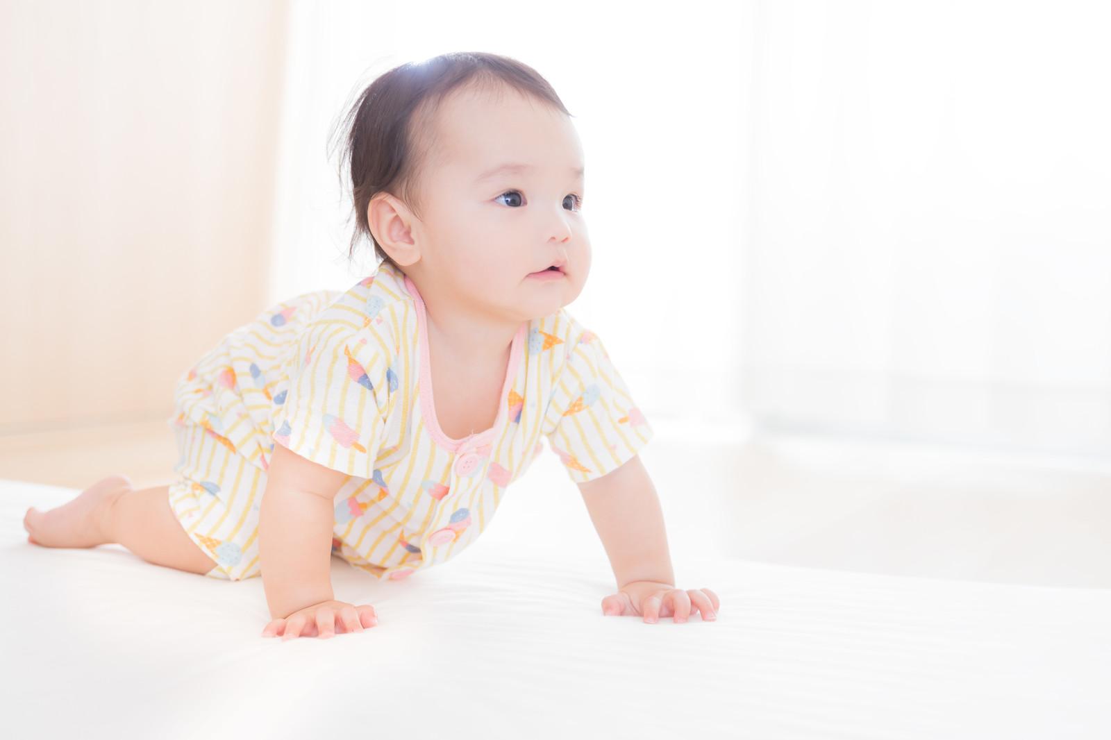 ハイハイをしている赤ちゃんの写真