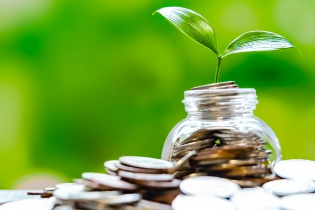 コインと植物の芽の画像
