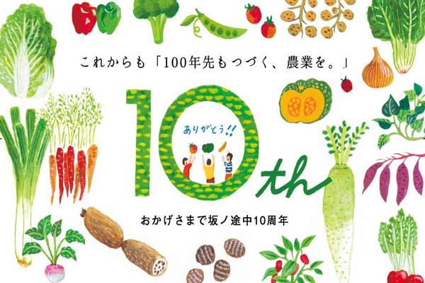 沢山の野菜のイラスト画像