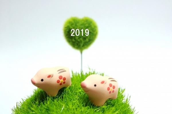 2019の文字と猪の置物の画像