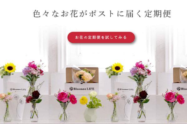 花瓶に入ったお花が並んでいる画像