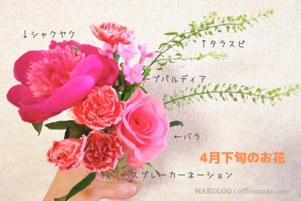 ブルーミーライフで3回目の届いたお花