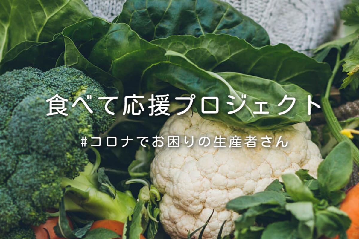 食べチョクの野菜の画像