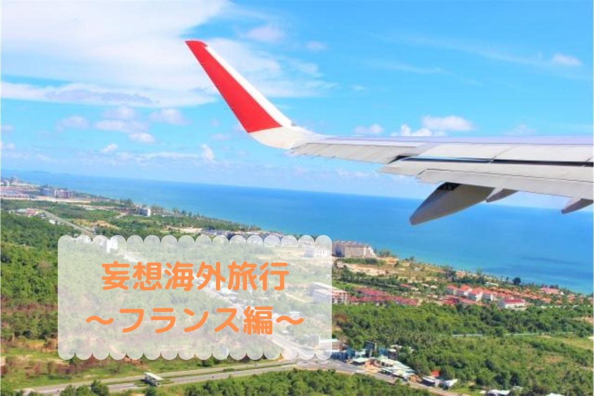 飛行機の羽と町と海の画像