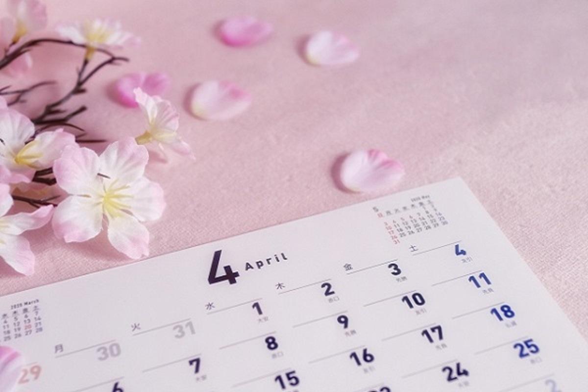 カレンダーと桜の花の画像