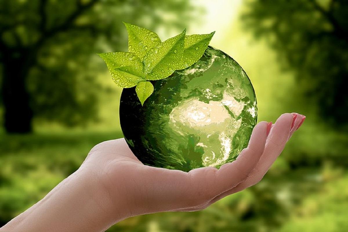 手のひらに緑の地球がのっている写真